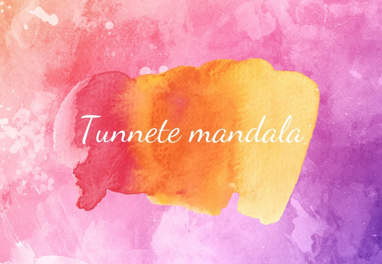 Mandalate suvi: Nädal 2